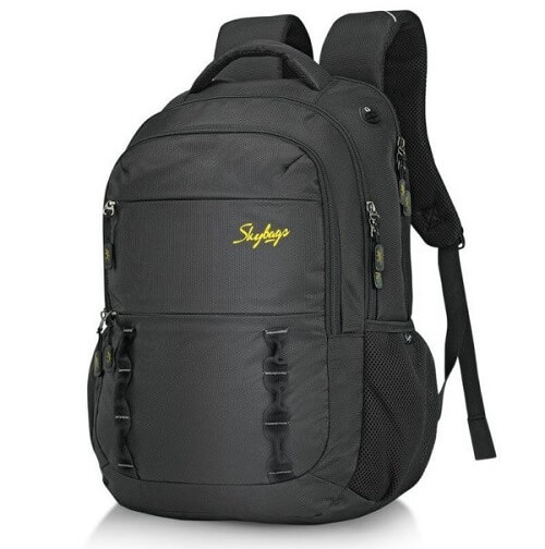 Skybags school bag
