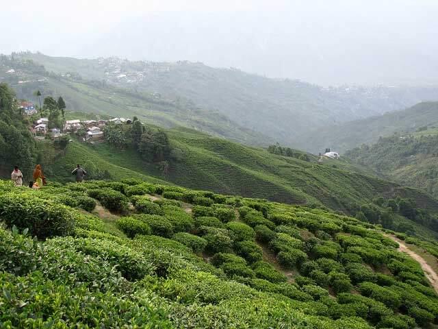 Hill Stations near Darjeeling,
